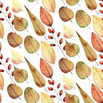 Otoño otoño acuarela patrón transparente