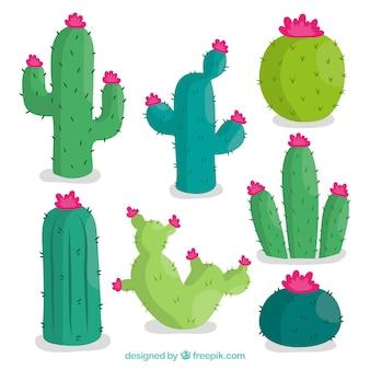 Pack adorable de cactus con estilo colorido