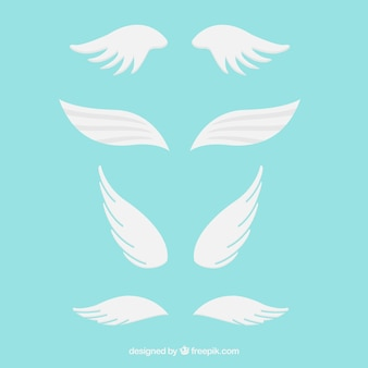 Pack de alas blancas