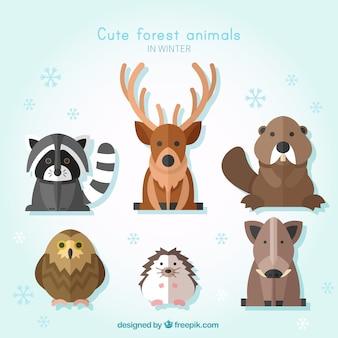 Pack de animales salvajes en diseño plano