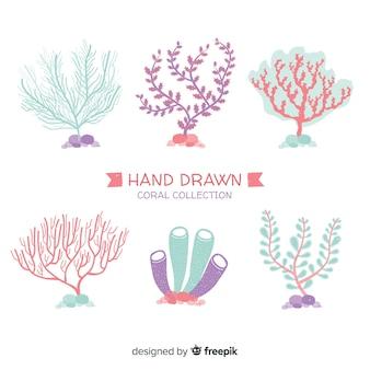 Pack corales dibujados a mano