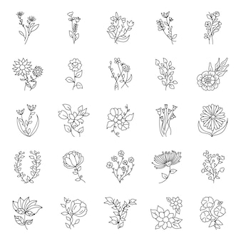 Pack de elementos florales dibujados a mano