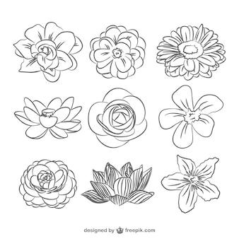 Pack de flores en blanco y negro