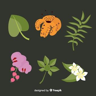 Pack flores y hojas tropicales planas