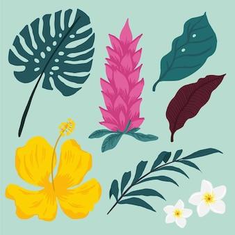 Pack de hojas y flores tropicales