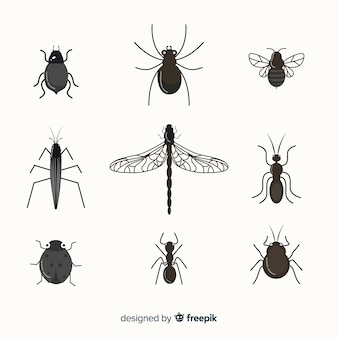 Pack insectos sin color planos