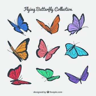 Pack de mariposas de colores volando