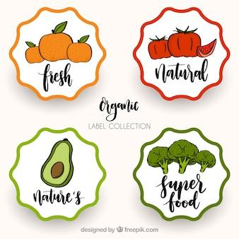 Pack de pegatinas retro de comida saludable