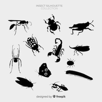 Pack siluetas insectos