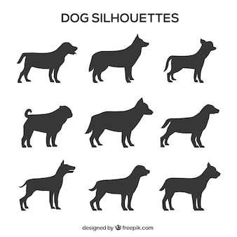 Pack de siluetas de perros de perfil