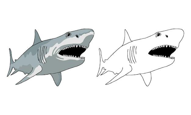 Página para colorear de tiburones dibujados a mano para niños