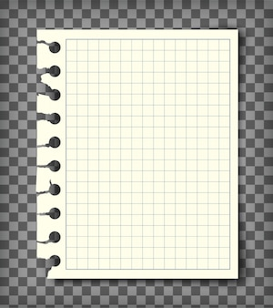 Página de cuaderno a cuadros vacía con borde rasgado