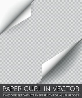Página de papel rizo con sombra aislado.