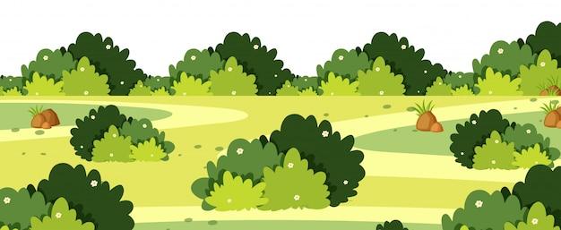 Paisaje con arbustos sobre hierba