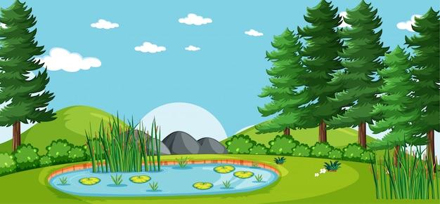 Paisaje en blanco en la escena del parque natural con muchos pinos y pantanos