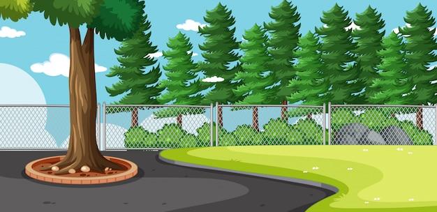 Paisaje en blanco en la escena del parque natural con muchos pinos