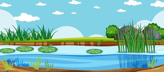 Paisaje en blanco en la escena del parque natural con pantano bajo