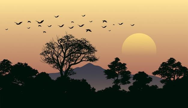 Paisaje del bosque al atardecer con pájaros volando