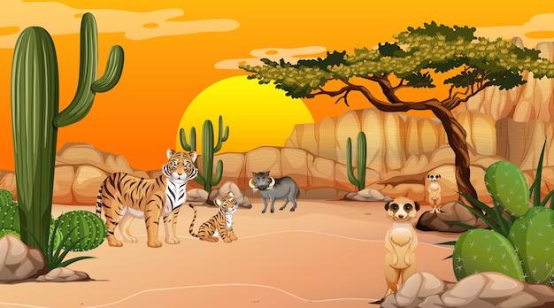 Paisaje de bosque desértico en la escena del atardecer con animales salvajes