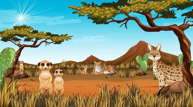 Paisaje de bosque desértico en escena diurna con animales willd