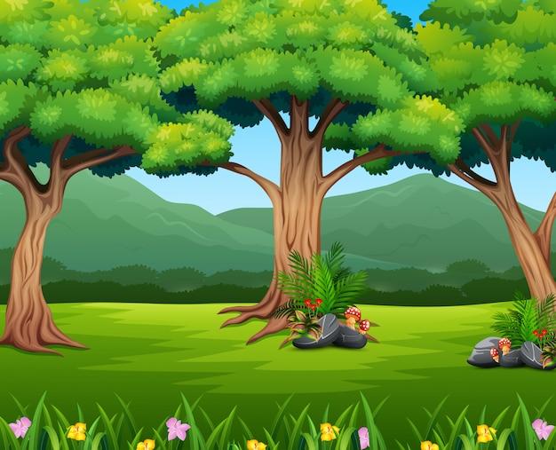 Paisaje de bosque verde con montaña