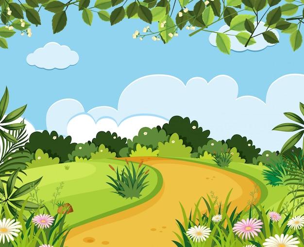 Un paisaje de camino natural