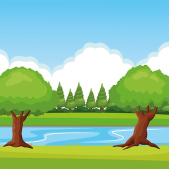 Paisaje forestal con río.