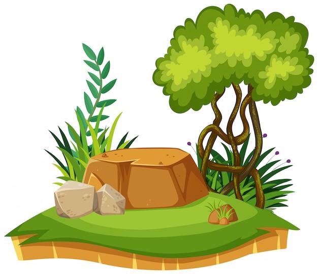 Paisaje natural del parque con hierba verde