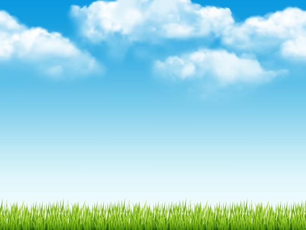 Paisaje de la naturaleza. fondo fresco con hierba verde cielo azul con nubes sueño campo realista de patrones sin fisuras
