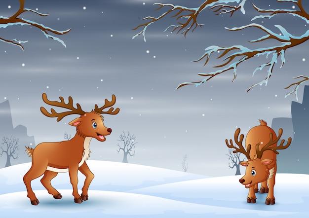 Paisaje de naturaleza sobre fondo de invierno de nieve con ciervos