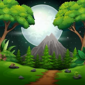 Paisaje nocturno de bosque con luna llena.