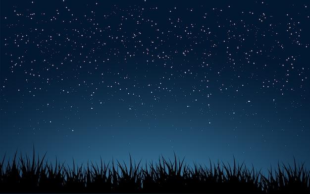 Paisaje nocturno minimalista con cielo estrellado y hierba