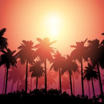 Paisaje de palmera contra el cielo del atardecer