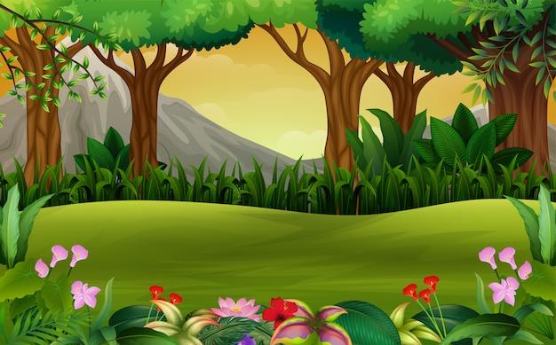 Paisaje panorámico del bosque verde con fondo de montaña