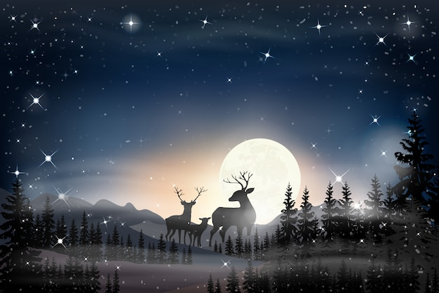 Paisaje panorámico de noche estrellada con luna llena