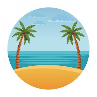 Paisaje de playa con palmera.