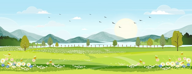 Paisaje de primavera con campo de granja, flores silvestres, cielo azul con el sol.