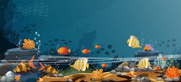 Paisaje de las rocas del océano los peces y los organismos que viven juntos.