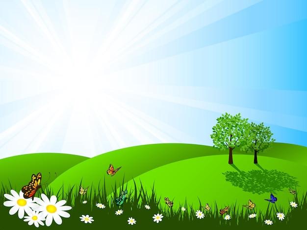 Paisaje de verano en un día soleado