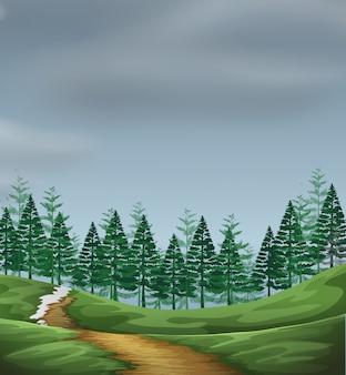 Un paisaje verde de la naturaleza.