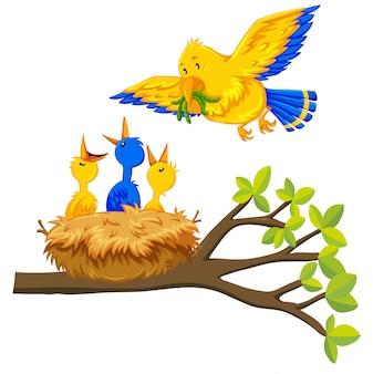 Pájaro de alimentación de aves