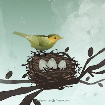 Pájaro y nido