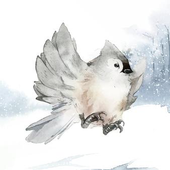 Pájaro de paro copetudo en invierno vector acuarela