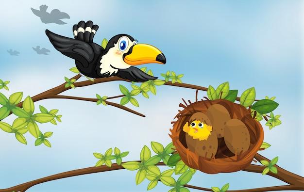 Un pájaro y su nido.