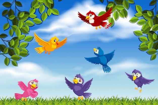 Pájaros coloridos en escena de la naturaleza