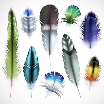 Pájaros exóticos naturales teñidos manchados verde púrpura brillante turquesa mezclar plumas de colores conjunto realista ilustración vectorial aislado