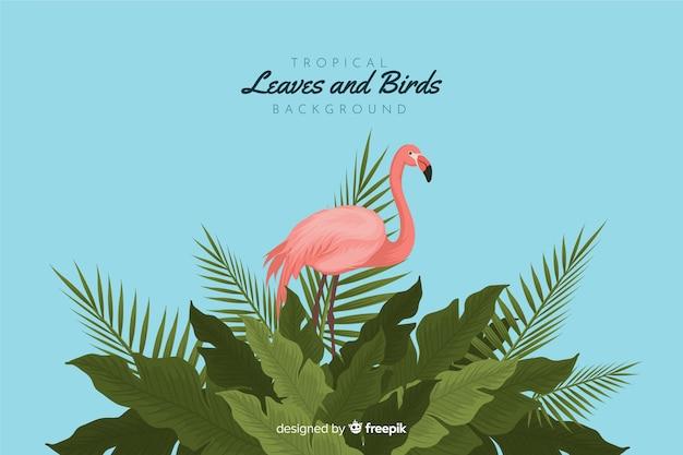 Pájaros y hojas tropicales