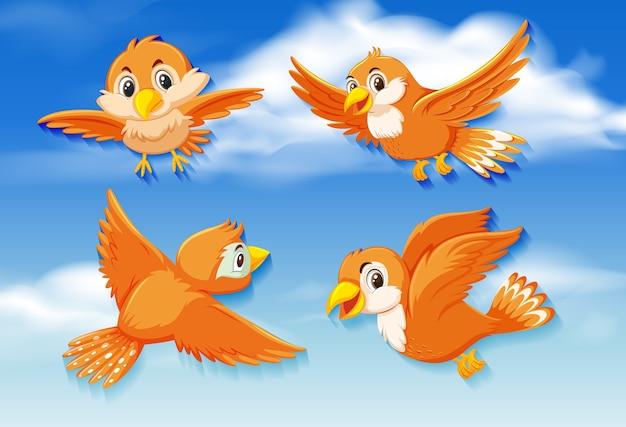 Pájaros naranjas en el cielo