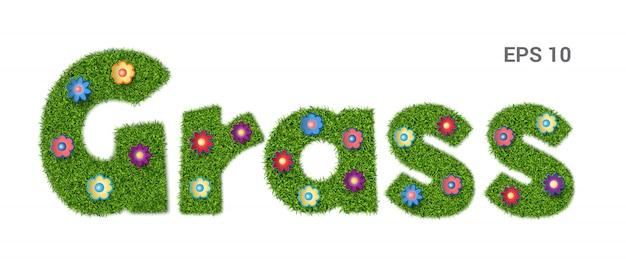 La palabra hierba. un alfabeto hecho con una textura de hierba.