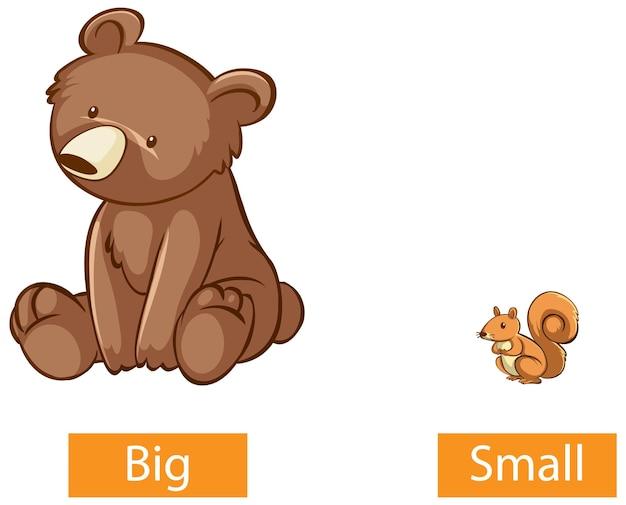 Palabras opuestas de adjetivos con grandes y pequeños.